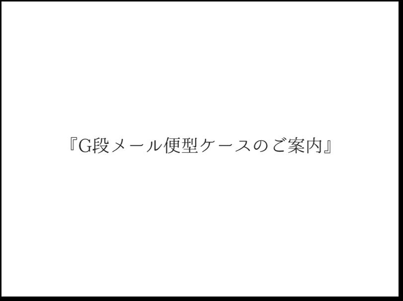 G段メール便型ケースのイメージ